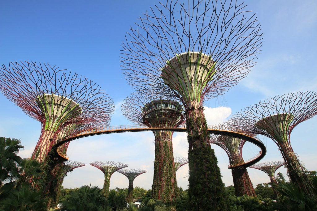 viaggi a singapore gardens by the bay